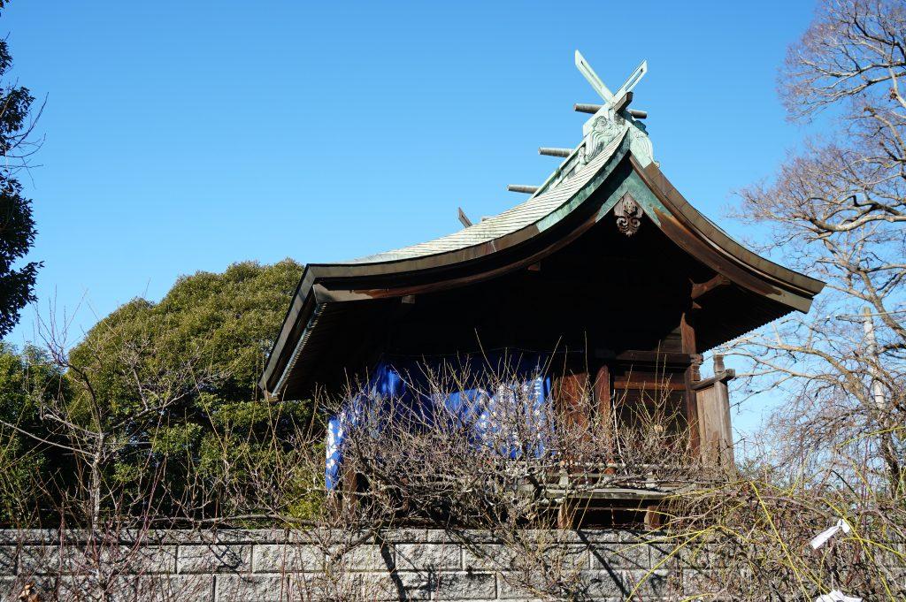 福岡県大牟田市鳥塚町88 三笠神社 神殿 梅の木