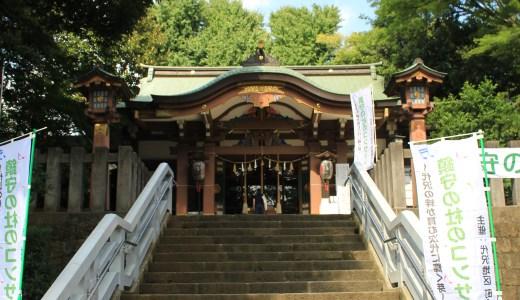 【下北沢】北澤八幡神社と森巖寺へ行ってきた【東京の神社と寺院】