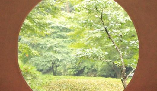 【北鎌倉】あじさいで有名な明月院とうさぎ饅頭で有名な茶寮 風花へ行ってきた【神奈川の寺院&グルメ】