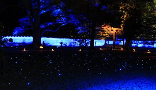 【京都の寺院】青蓮院門跡へ行ってきた【夜間ライトアップ】