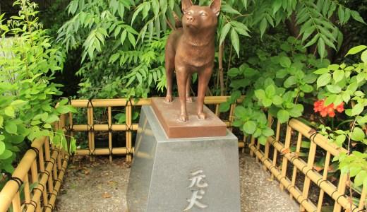 蔵前神社へ行ってきた【東京の神社】