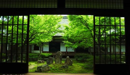 【東山】新緑の季節の建仁寺へ行ってきた【京都の寺院】