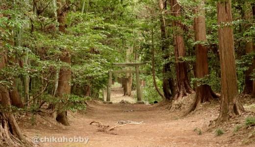 【かすみがうら市】自然豊かで人も親切な胎安神社へ行ってきた【茨城の神社】