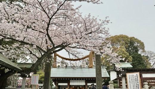 桜が見頃の時期に横浜総鎮守 伊勢山皇大神宮へ行ってきた【神奈川の神社】