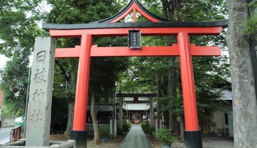 【武蔵小杉】丸子山王日枝神社へ行ってきた【神奈川の神社】
