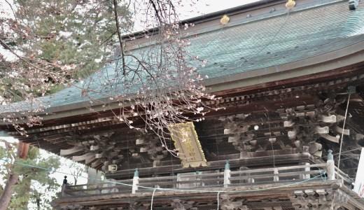 【岩沼市】日本三稲荷!竹駒神社へ行ってきた【宮城の神社】
