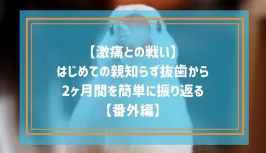 【激痛との戦い】はじめての親知らず抜歯から2ヶ月間を簡単に振り返る【番外編】