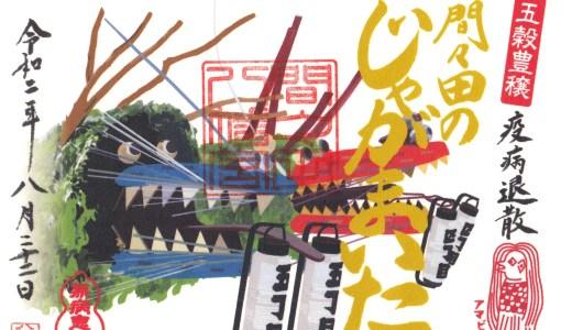 【小山】御朱印が話題の鴨に癒される神社!間々田八幡宮へ行ってきた【栃木の神社】