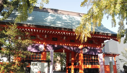 【市川】イチョウの紅葉が美しい!葛飾八幡宮へ行ってきた【千葉の神社】