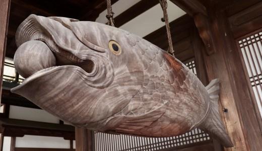 【宇治】萬福寺へ行ってきた【京都の寺院】