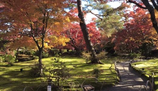 【嵯峨野嵐山/紅葉シーズン】天龍寺の塔頭寺院!宝厳院へ行ってきた【京都の寺院】