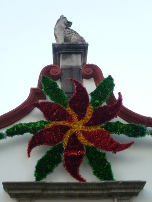 Nochebuena Coyoacan