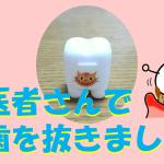 永久歯が内側から生えてきたので、歯医者さんで乳歯を抜きました