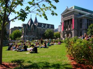 mcgill-university-main-quad-504875-m