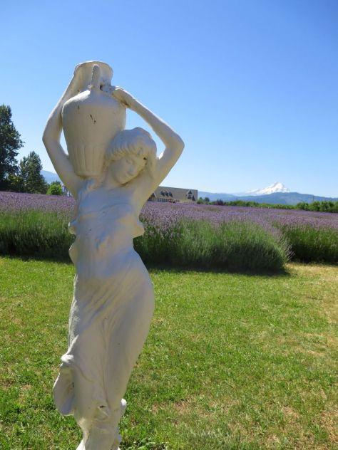 Lavender Valley, Hood River Oregon
