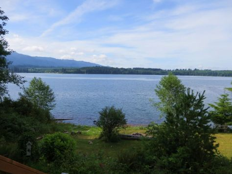 Lake Quinault 2014 082