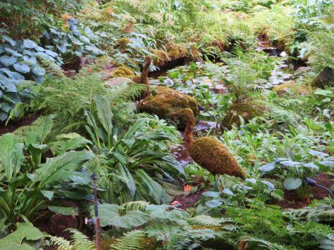 Bog Garden Butchart Gardens Victoria BC