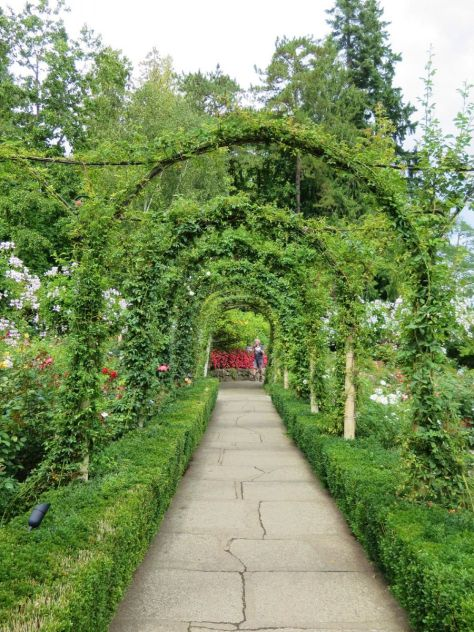 Rose Garden Butchart Gardens Victoria BC