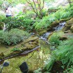 Japanese Garden Butchart Gardens Victoria BC