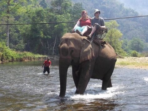 Riding elephants in Thailand, 2014
