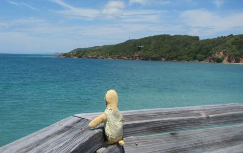 Crazy Baby takes in the sights at Paya Bay. Photo by Amy and Lance Blackstone