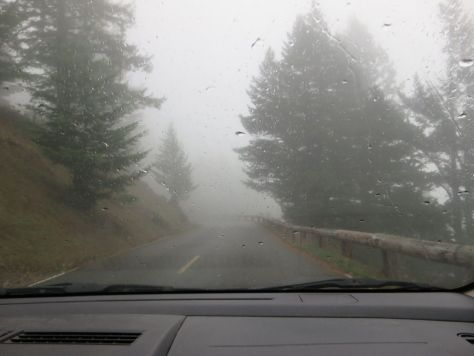Foggy road to Mt Constitution