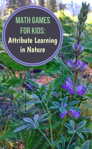 Math Games For Kids Learning About Attributes In Nature