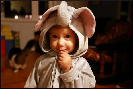 kid-in-elephant-costume