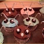 bug-cupcakes