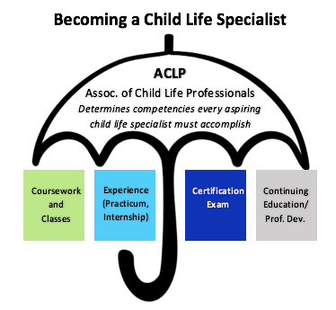 The Ultimate Guide to Becoming a CCLS - CHILD LIFE COOPERATIVE