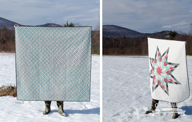 Quilt Walking in the Snow