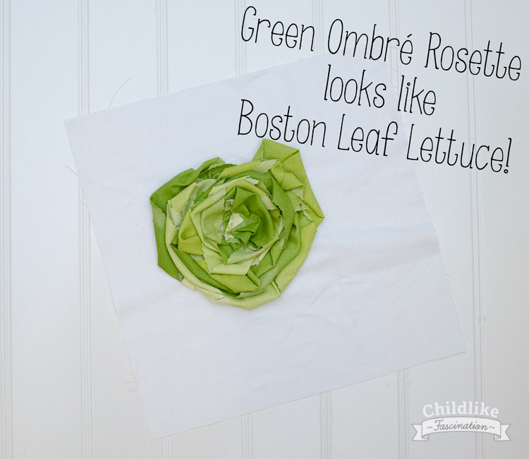 It's an ombré rosette in green...or a head of lettuce, your call