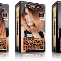 Beauty Review: L'Oreal Paris Preference Wild Ombre Kit