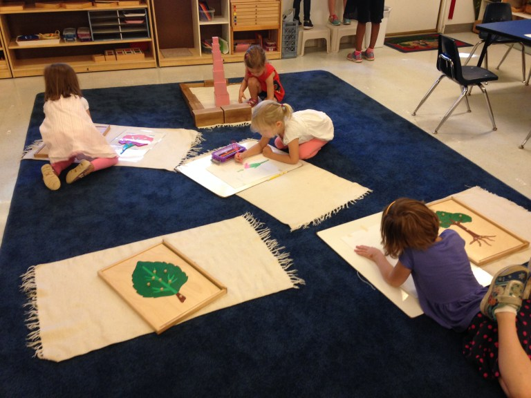What to Look for in a Montessori Preschool