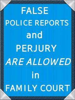 False Police Reports - 2016