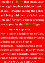 vawa-injustice-2015