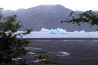 Icebergs en el lago Grey