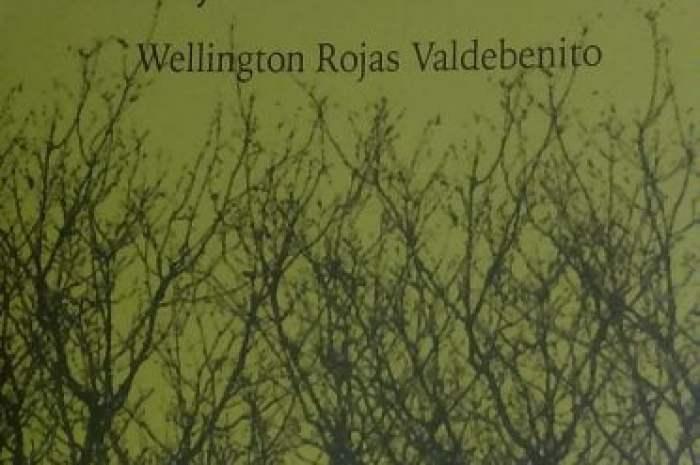 """Wellington Rojas y """"El bosque de los vocablos"""""""