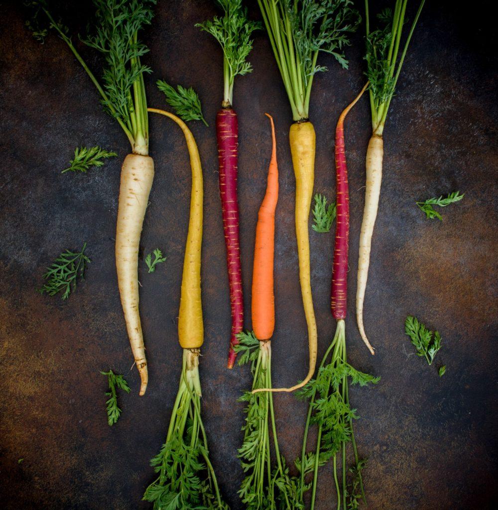 El Cultivo De La Zanahoria Chile Huerta La sabiduría popular la considera muy buena para la vista, cicatrizante intestinal, diurética y astringente. el cultivo de la zanahoria chile huerta