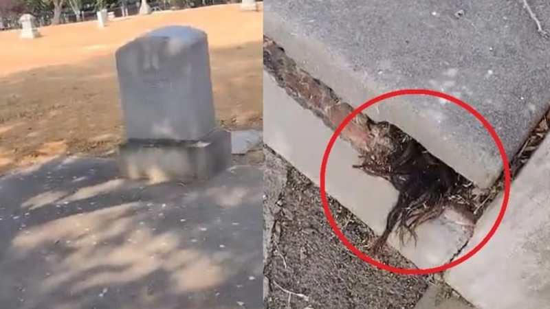 ESCALOFRIANTE video: descubre CABELLO saliendo de una TUMBA de más de 100 AÑOS