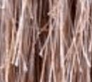 切れ毛の白い点は何?切れ毛をちぎると良くない理由