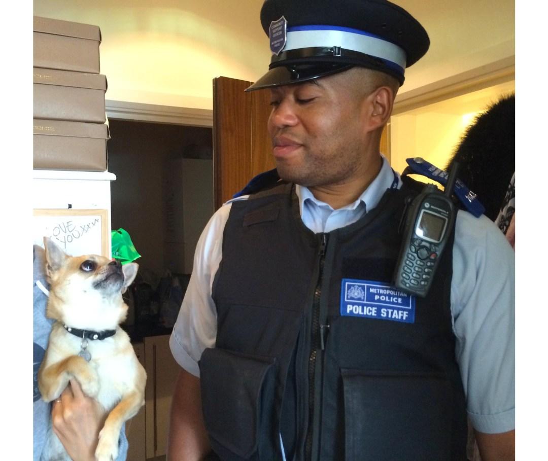 dog blog police offer