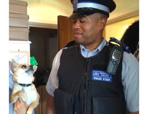 dog blog police offer