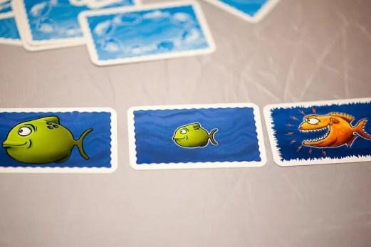 Drei aufgedeckte Karten des Spiels zeigen einen großen grünen und einen kleinen grünen Fisch hintereinander. Dahinter ist ein großer orangener Fressfisch.