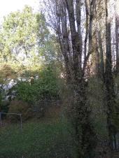Blick aus dem Fenster, der Hof liegt im Schatten. Heute wird es sonnig.