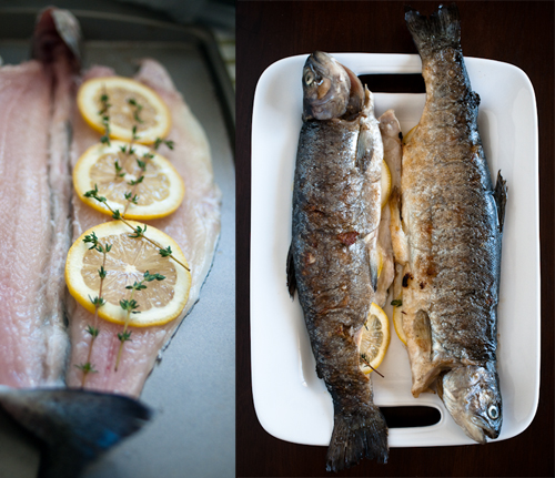 090426_trout_raw