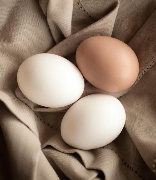 091126_eggs_lg