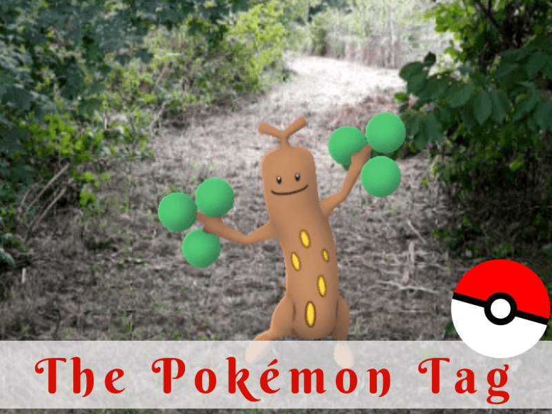 The Pokemon Tag