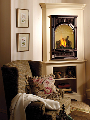 Gas Stoves Inserts Fireplaces  Cincinnati OH  Chimney Care Company
