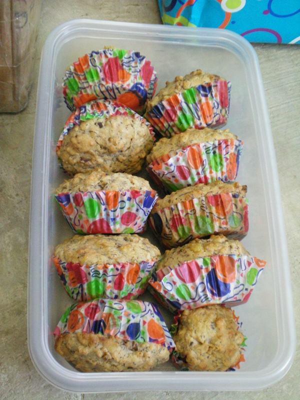 Muffins for Foxie's birthday